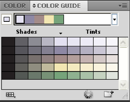 color guide illustrator